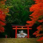 【紅葉の綺麗な秋にこそおすすめ!】鹿児島観光ランキングTOP5!