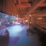 【こんなお風呂なら子連れも安心!】霧島の家族で楽しむ温泉TOP5!
