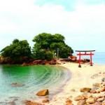 【絶景が見える!】薩摩半島で観光地を巡るならおすすめドライブコースはこれ!
